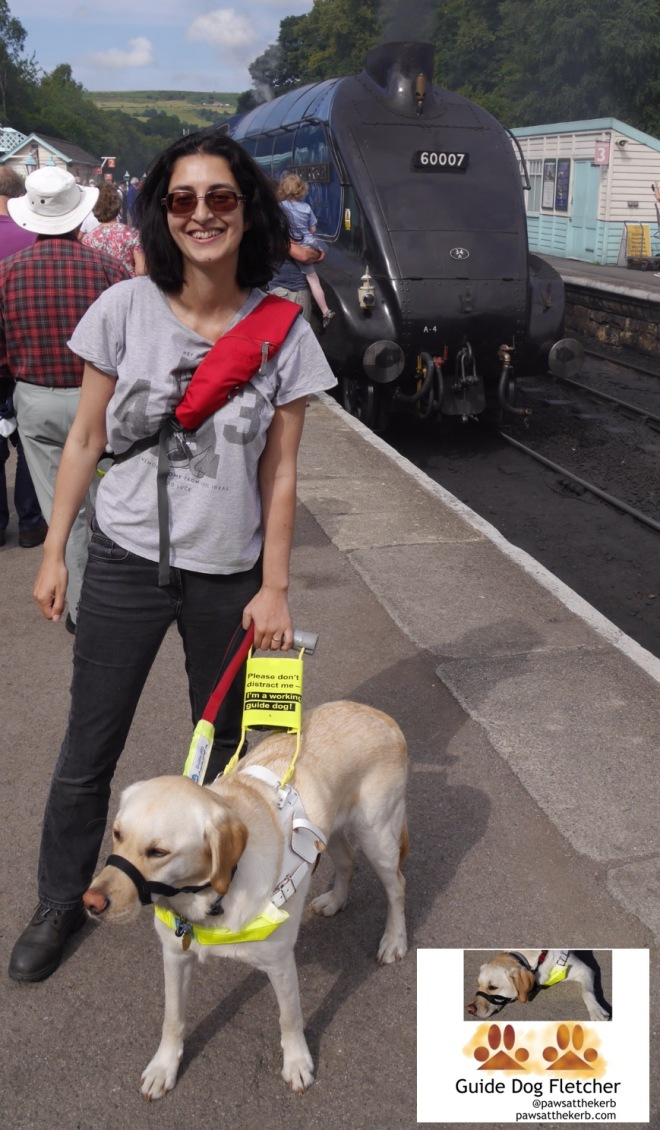 Me guide dog Fletcher with my human in front of Sir Nigel Gresley steam train