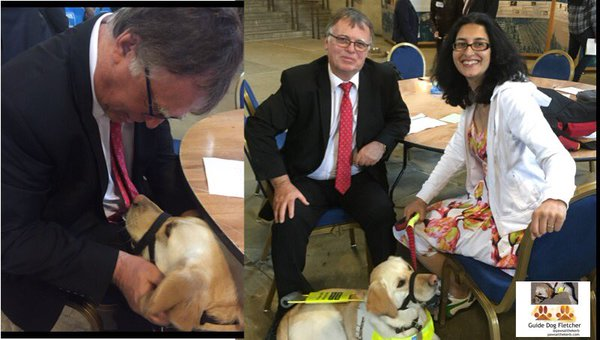 Me guide dog Fletcher getting fusses from my MP, and on the right my MP, my human and I inside Westminster Hall
