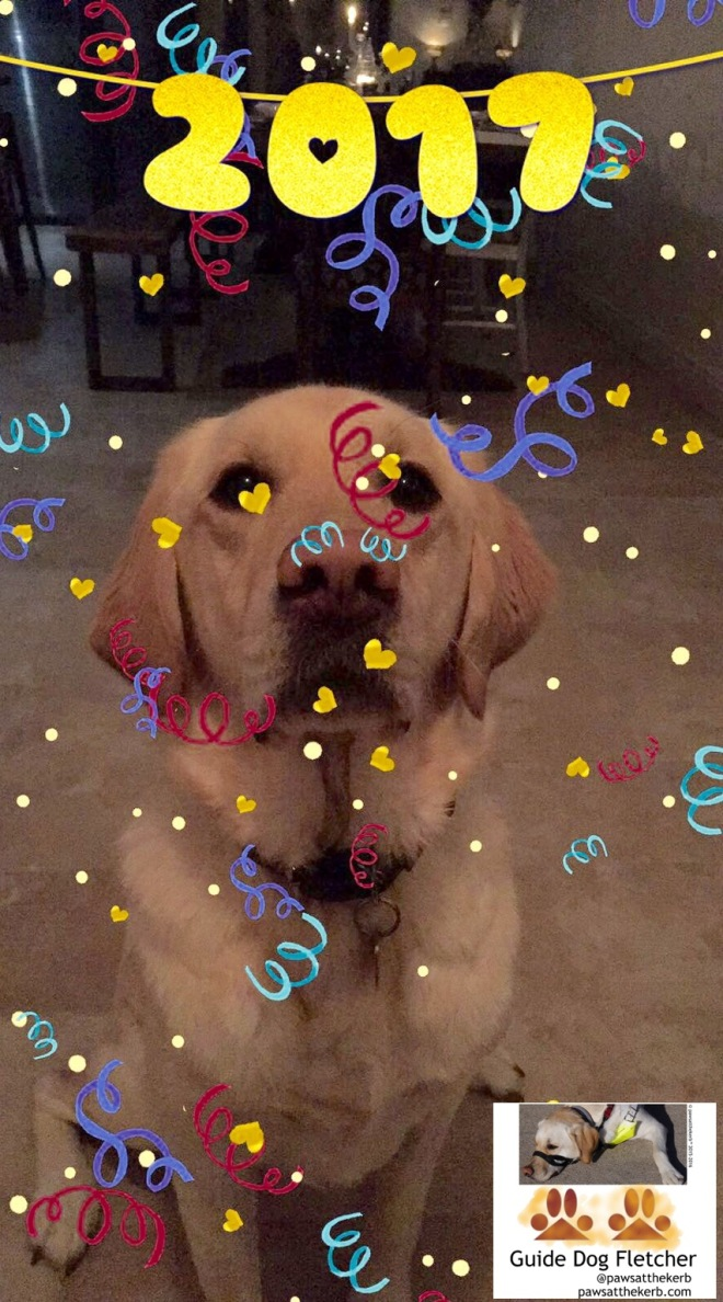 Me guide dog Fletcher sat facing you and looking attentive. My fur is golden. And at the top of the photo is written 2017. There's an overlay of multi coloured streamers and hellow confetti. @pawsatthekerb