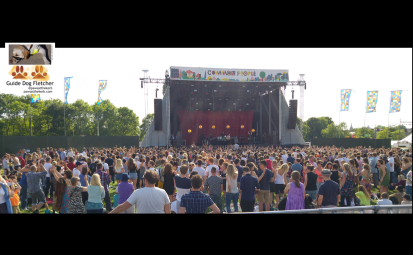 My view, that's Guide dog Fletcher's view, at Common People music gig. In the distance there's a rectangular music stage, with lots of people of different ages standing in the sun. There are flags and green leaf trees in the background. @pawsatthekerb