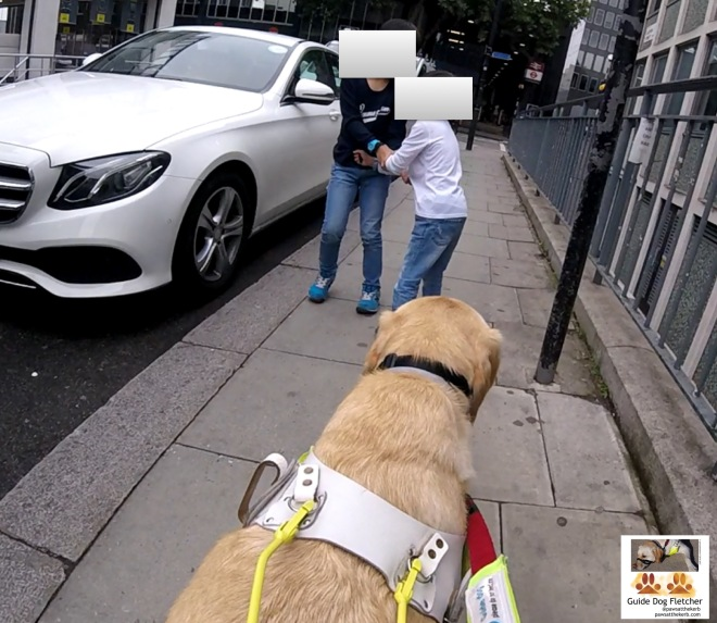 Me guide dog Fletcher guiding along a narrow pavement on a side road. There's a white parked car on the road. In front of me are two small childen, one is about the same height as the car. The other one is 30cm shorter. I've blanked out their faces. @pawsatthekerb