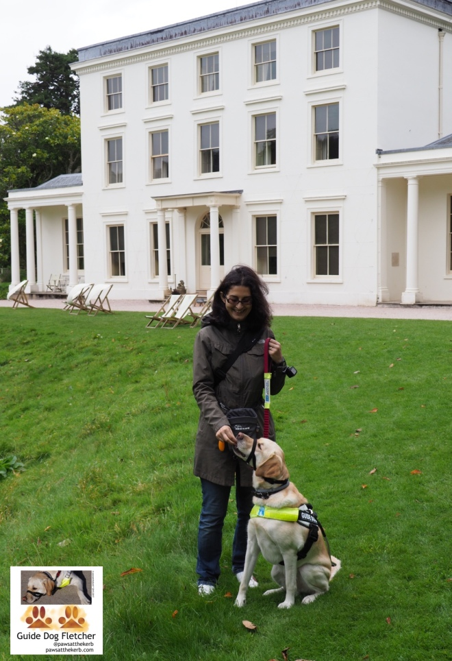 Me guide dog Fletcher with my human in front of the back of the white building which is Greenway. My human is standing on the lawn giving me a treat. I'm seated of course. Best position for treats. The house has deck chairs outside. I would try to describe the house but it's a house. A big one. @pawsathekerb