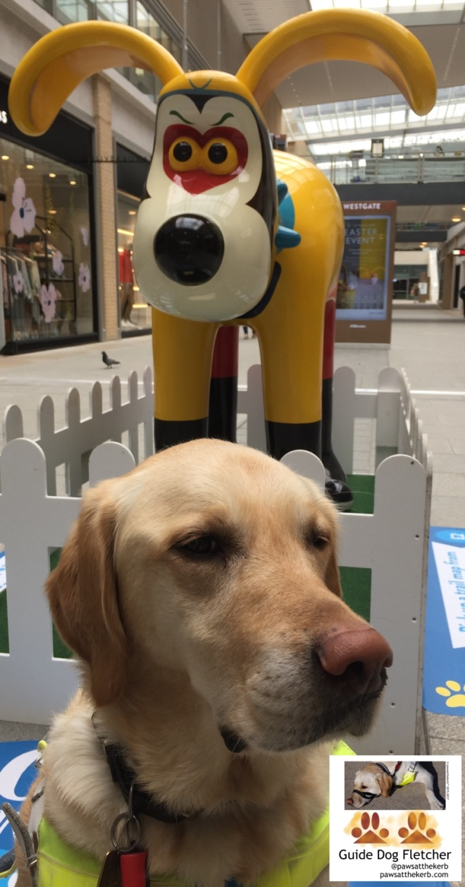Me guide dog Fletcher in harness sat in a shopping centre. Behind me is Gromit from Wallace and Gromit. He's three times taller than me. He looks weird and is in yellow. I've got golden fur. @pawsatthekerb