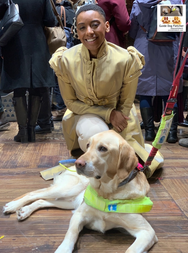 Me guide dog Fletcher in harness lying down in front of the pawsome Ellena Vincent star of Hamilton The Musical London. She's in a gold coat with puffy sleeves, buttoned up over a tight corset and paler leggings. She's semi kneeling. @pawsatthekerb